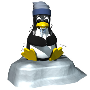 computer_penguin_cold_hr