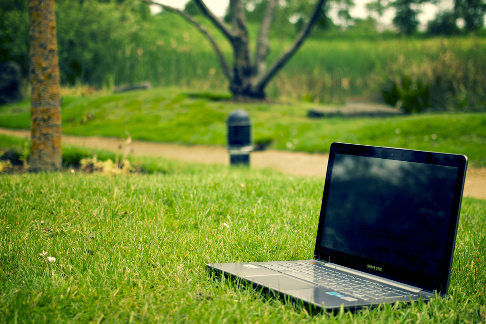 eco-grass-laptop