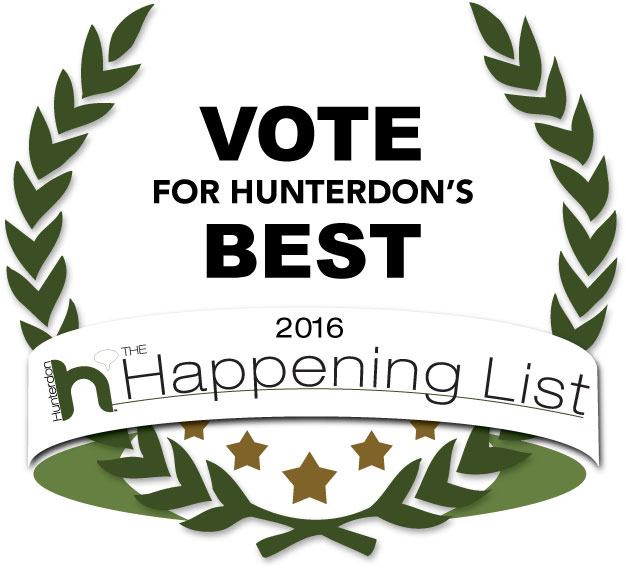 hunterdon-vote-badge-2016