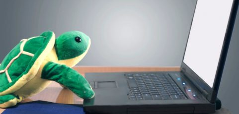 The 'Sea Turtle' wave of domain hijackings besetting the Internet is worse than we thought